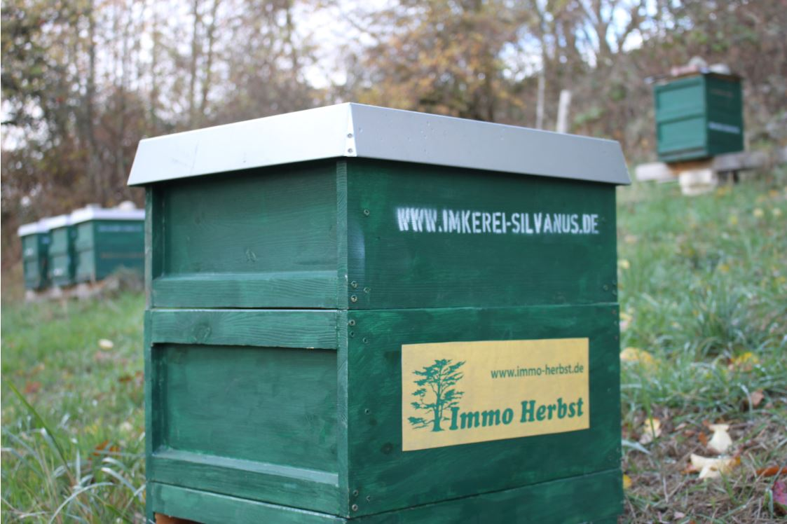 Immo Herbst